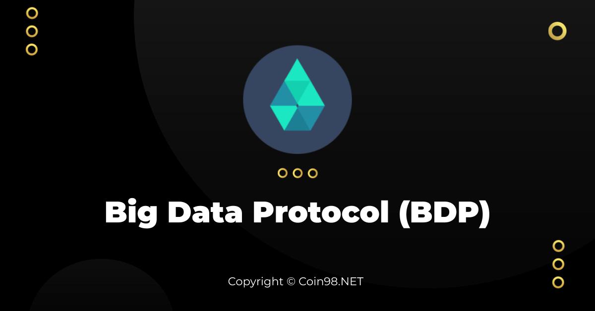 Big Data Protocol (BDP) là gì? Toàn tập về tiện điện tử BDP